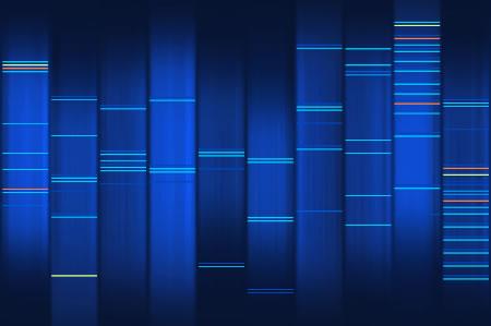 'Plugins'-Artikel via 'WEB2DNA'