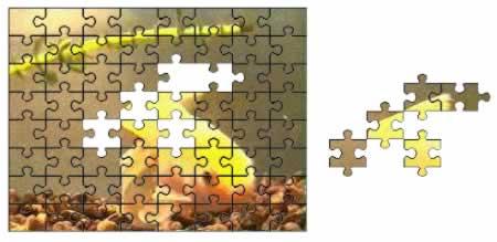 Screenshot 'Video-Puzzle'